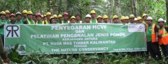 PT. Roda Mas Timber Kalimantan - Camp Sei Boh